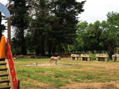agripark stigliano vicino roma